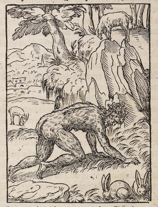 Pierre Boaistuau, Histoires prodigieuses, 1560